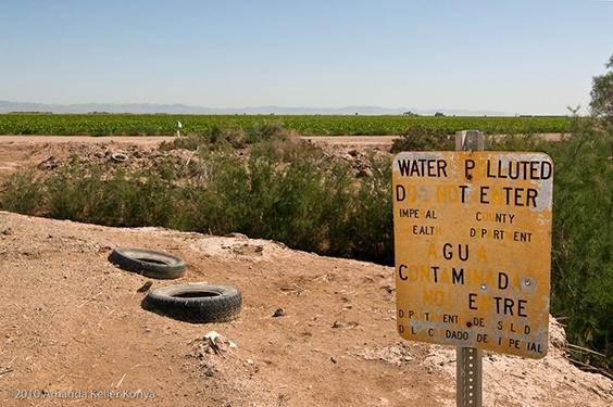 Photo by Amanda Keller Konya for Water exhibit