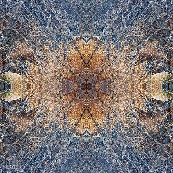 Photo by Heather Kadar for Digital Darkroom exhibit