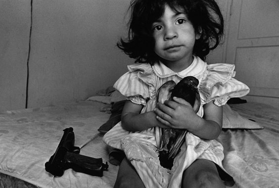 Donna DeCesare: Children of War